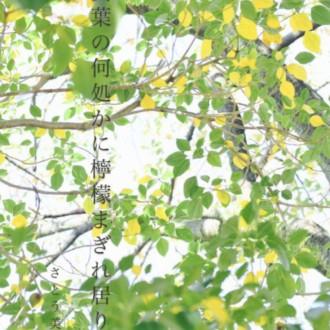 檸檬と黄葉