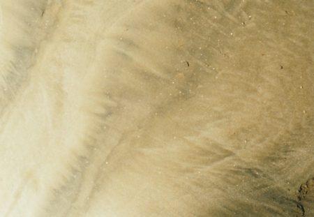 エクリチュール~砂漠の道~